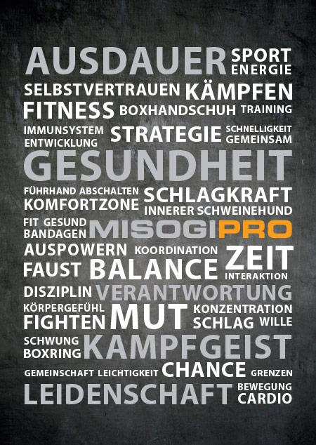 Misogi Pro Boxen Frankfurt